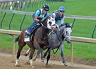 Fast and Accurate (inside) works with 4-year-old Adventist April 30 at Churchill Downs