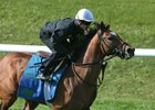 Heart to Heart Seeks Grade 1 Glory in Maker's 46 Mile