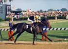 Seattle Slew wins 1977 Kentucky Derby.