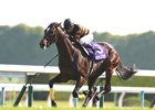 Kitasan Black Dominates in Tenno Sho
