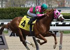 Dolphus wins at Aqueduct over a field that included a Derby contender and a grade 1-placed colt