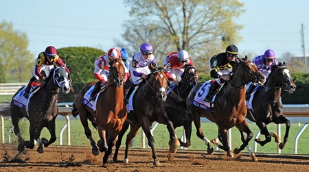 (April 8, 2017)  Start of the Gr.2 Blue Grass Stakes at Keeneland