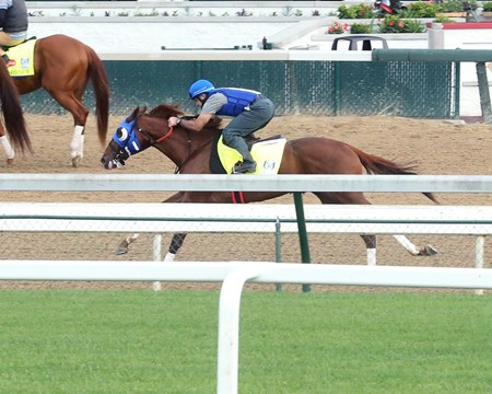Gunnevera - Work - Churchill - 04-28-17