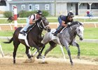 Fast and Accurate (inside) works five furlongs in :59 3/5 April 15 at Trackside Louisville