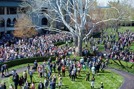 On-track handle improved on a crowded Blue Grass Stakes day at Keeneland