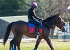 Miss Temple City at Fair Hill Training Center near Elkton, Md.