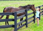 "Horse Country plans its ""Meet the NEIGHbors weekend for March 3-4"