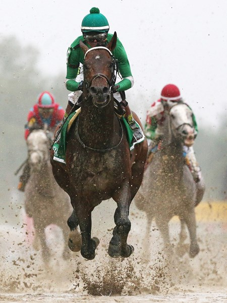 Exaggerator wins the 2016 Preakness Stakes