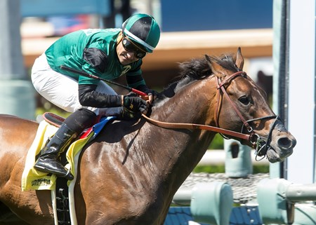 Paymaster Racing's Inordinate and jockey Corey Nakatani win the Grade III, $100,000 San Juan Capistrano Stakes, Saturday, April 22, 2017 at Santa Anita Park, Arcadia CA.