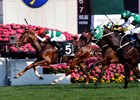 Neorealism holds narrowly to win the Audemars Piguet Queen Elizabeth II Cup