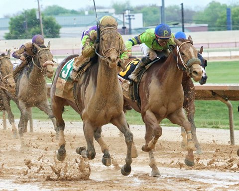 Imperative (outside) wins the 2017 Charles Town Classic
