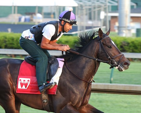 McCraken -  Gallop - Churchill Downs - 04-13-17