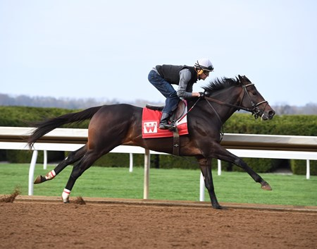 McCraken - Keeneland - April 2, 2017