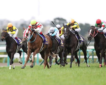 Reine Minoru (JPN) wins the 2017 Oka Sho