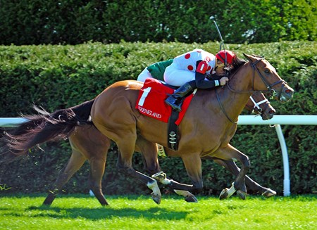 (April 8, 2017)  Holding Gold, Joel Rosario up, wins the Gr.2 Shakertown Stakes at Keeneland.