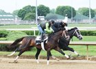 Battalion Runner, Malagacy to Bypass Kentucky Derby