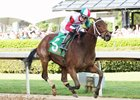 Inside Straight runs the biggest race of his life in the Oaklawn Handicap