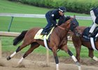 Practical Joke breezes under Joel Rosario April 28 at Churchill Downs