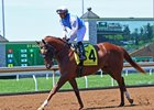 Wesley Ward trainee McErin on the track at Keeneland April 12