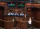 Tiznow Colt Brings $2.45 Million at OBS