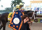 Always Dreaming wears the Florida Derby garland of flowers after winning by five lengths