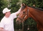 Trainer Lynn Whiting was an astute horseman beloved by many on the racetrack