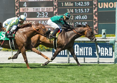 Paymaster Racing's Inordinate and jockey Corey Nakatani, right, outleg Syntax (Rafael Bejarano), left, to win the Grade III, $100,000 San Juan Capistrano Stakes, Saturday, April 22, 2017 at Santa Anita Park, Arcadia CA.