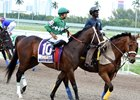Three Rules in the Florida Derby post parade