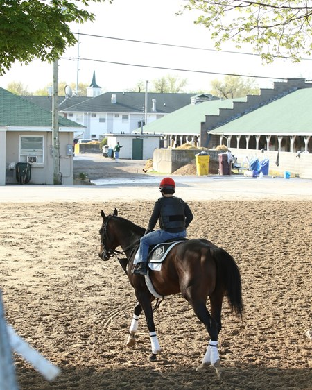 J Boys Echo -  Gallop - Churchill Downs - 04-13-17
