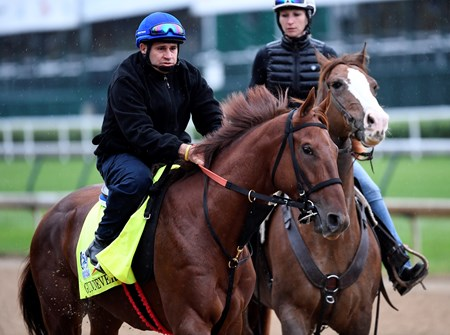 Gunnevera out for exercise Wednesday morning May 4, 2017 in preparation for Saturday's 143rd running of the Kentucky Derby at Churchill Downs in Louisville, Kentucky.