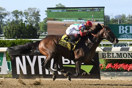 Connect wins the 2017 Westchester Stakes (G3)