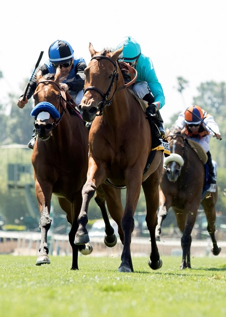 Lady Eli wins the 2017 Gamely