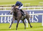 Galileo, Coolmore Dominate European Classics
