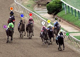2017 Preakness Stakes Race Sequence