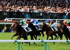 Rey de Oro wins Japanese Derby