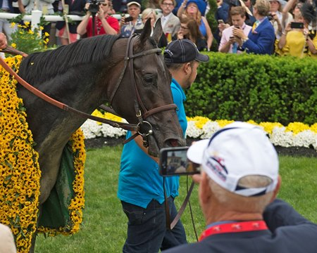 Cloud Computing after his Preakness victory