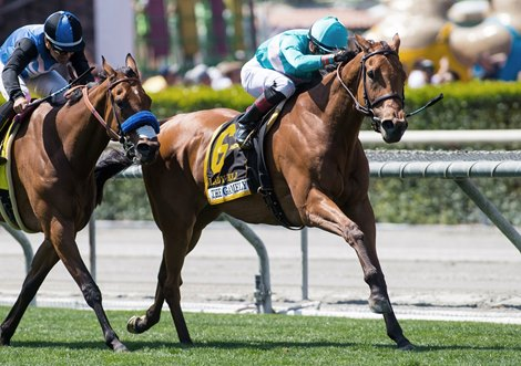 Lady Eli Digs In To Win Gamely Bloodhorse