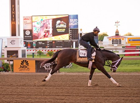 Always Dreaming galloping at Pimlico May 15