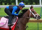 Summer Luck gallops over the track at Churchill Downs May 4