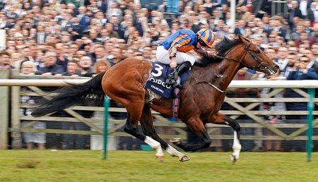 Churchill kicks away to win the Two Thousand Guineas by a length