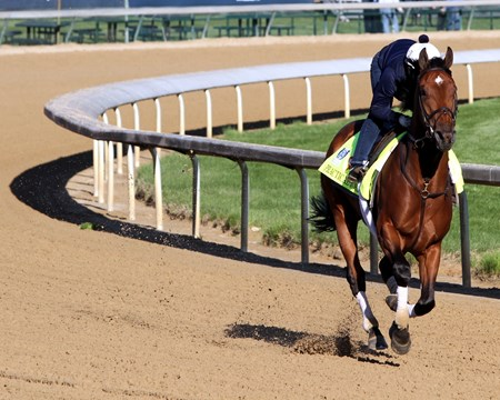Practical Joke on the track at Churchill Downs on May 2, 2017 preparing for the Kentucky Derby.
