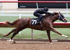 Barretts Features Horses Bred in Kentucky, California