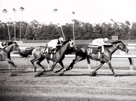 Look Back Gamely Leads A Perry Sweep In 1968 Vanity