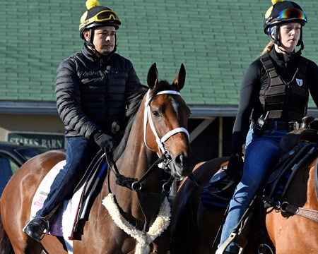 Farrell Derby and Oaks contenders in the morning at Churchill Downs  May 2, 2017 Churchill Downs in Louisville, Ky.