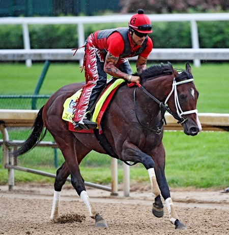 Classic Empire out for exercise Wednesday morning May 4, 2017 in preparation for Saturday's 143rd running of the Kentucky Derby at Churchill Downs in Louisville, Kentucky.