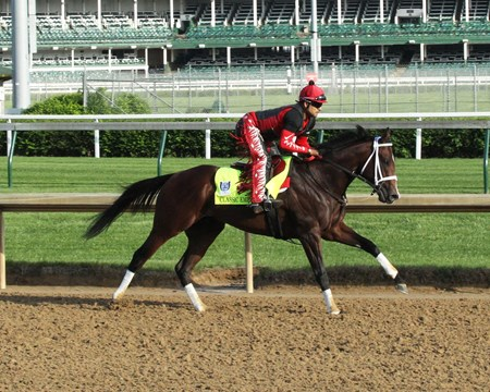 Classic Empire - Gallop - Churchill Downs - 05-01-17