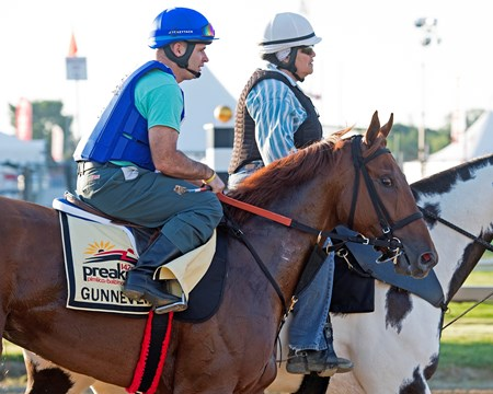 Gunnevera Preakness contenders at Pimlico.  May 17, 2017