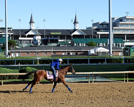 Abel Tasman Derby and Oaks contenders in the morning at Churchill Downs  May 2, 2017 Churchill Downs in Louisville, Ky.