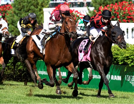 Divisidero (outside) gets up late to win the Woodford Reserve Turf Classic