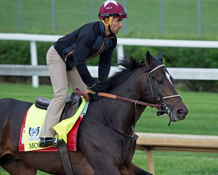 McCraken Derby and Oaks contenders in the morning at Churchill Downs  May 3, 2017 Churchill Downs in Louisville, Ky.